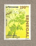 Sellos de Africa - Senegal -  La flora espontánea