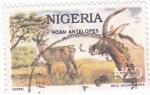 Sellos de Africa - Nigeria -  ANTÍLOPES
