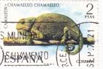 Sellos de Europa - España -  Camaleón-FAUNA HISPÁNICA  (y)