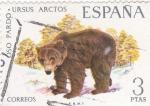 Sellos de Europa - España -  Oso Pardo-FAUNA HISPÁNICA  (y)