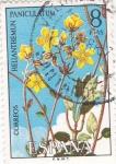 Stamps Spain -  FLORA- Hellantheumun paniculatum    (y)
