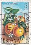 Sellos de Europa - España -  FLORA- Naranjo    (Y)