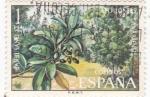 Sellos de Europa - España -  FLORA-Barbusano (y)