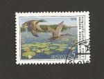 Stamps Russia -  Conservación de Anas plathyrinchus