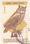 Sellos de America - Uruguay -  Buho (virginianus nacurutu)