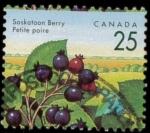 Sellos de America - Canadá -  Saskatoon Berry