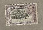 Stamps Asia - Sri Lanka -  Elefantes