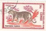 Sellos de Africa - República del Congo -  PANTERA PARDA