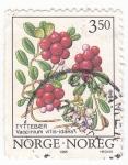 Stamps Norway -  VACINIUM VITIS