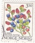 Stamps Norway -  VACCINIUM MYRTILLUS