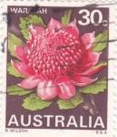 Stamps Australia -  WARAYAH