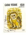 Sellos de Africa - Cabo Verde -  Lechuza