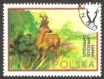 Sellos de Europa - Polonia -  2095 - fauna, un ciervo