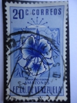 Stamps Venezuela -  E.E.U.U de Venezuela- Estado: Amazonas- Escudo