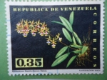 Sellos de America - Venezuela -  Epidendrum Stramfordianum Batem- Orquídea.