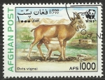 Stamps : Asia : Afghanistan :  WWF - fauna, ovis vignei