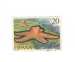 Sellos del Mundo : Europa : España : Estrella de mar