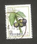 Stamps : Asia : Taiwan :  3432 - Solanum americanum