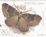 Sellos de Europa - Portugal -  Madeira- Mariposa