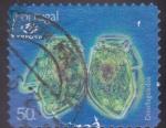 Sellos de Europa - Portugal -  Dinoflagelados- Expo-98