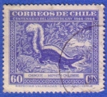 Stamps : America : Chile :  Centenario del libro de Gay