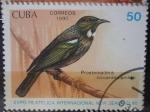 Sellos del Mundo : America : Cuba :  Prostemadera novaeseelandiae - Expo Filatélica Int. New Zealand-90