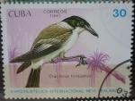 Sellos del Mundo : America : Cuba :  Cracticus torquatus - Expo Filatélica Int. New Zealand-90