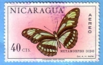 Stamps Nicaragua -  Metamorpho Dido