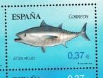 Stamps Europe - Spain -  Edifil  4799 B  Fauna Marina en peligro de extinción.