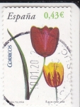 Stamps Spain -  Flora-Tulipan  (3)