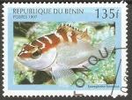Stamps Benin -  EPINEPHELUS  FASCIATUS