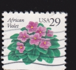 Stamps : America : United_States :  African Violet