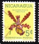 Sellos de America - Nicaragua -  Schomburgkía Tibicinus