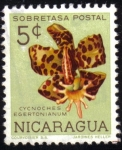 Stamps Nicaragua -  Cycnoches Egertonianum