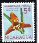 Stamps Nicaragua -  Maxillaria Tenuifolia