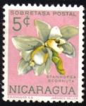 Stamps Nicaragua -  Stanhopea Ecornuta