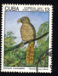 Stamps Cuba -  Aves Endemicas