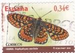 Sellos del Mundo : Europa : España :  Mariposa  (4)