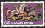 Sellos de Africa - Hungría -  Caza