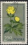 Sellos de Europa - Polonia -  POLONIA SCOTT_1075 GLOBEFLOWER
