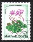 Sellos de Europa - Hungría -  Europaeum Cyclamen