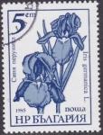 Sellos del Mundo : Europa : Bulgaria :  Flores