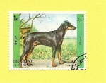 Stamps Asia - United Arab Emirates -  SHARJAH - Perros de raza