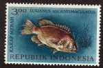 sello : Asia : Indonesia : Kakap merah