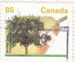 Stamps Canada -  Arbol frutal- peral