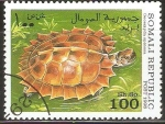 Stamps Somalia -  GEOEMYDA  SPINOSA
