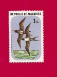 Stamps Asia - Maldives -  Flora y Fauna - Aves - Fragata