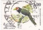 Sellos de Asia - Sri Lanka -  Red faced Malkoha