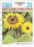 Stamps Cuba -  Plantas medicinales- Girasol