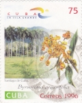 Stamps Cuba -  Flores- Byrsonima crasifolia